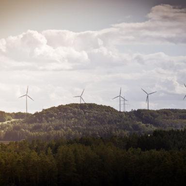 Wo viele Windräder stehen gibt es auch viel Wind – aber nicht nur Rückenwind.