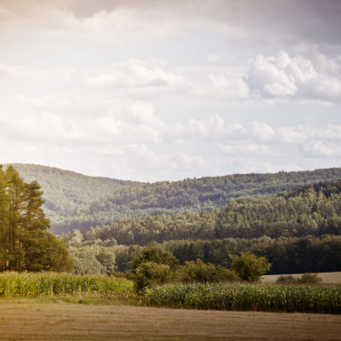 Landschaft bei Geisdorf