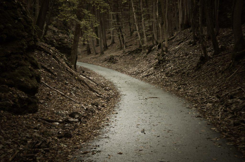 Eigentlich eine super Abfahrt in einem Wald bei Tiefenstürmig, wäre sie nicht so naß und blätterig gewesen