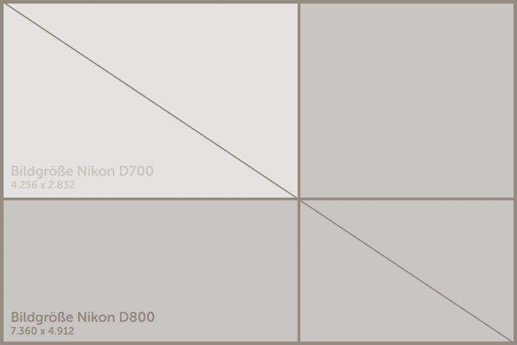 Der Sensor der Nikon D800 enthält im Vergleich zur Nikon D700 fast dreimal so viele Pixel