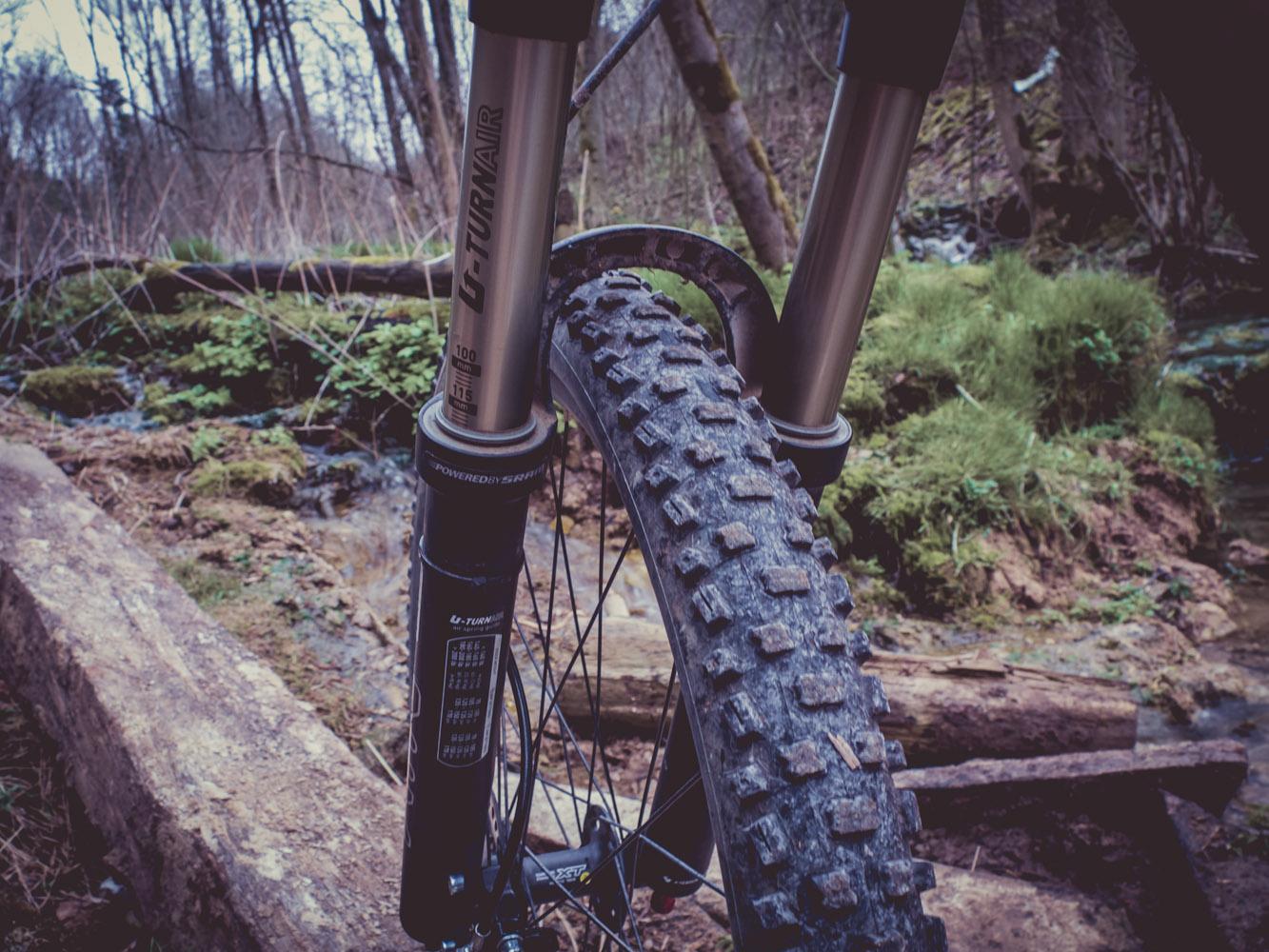 Mit der Fujifilm X10 im Wald
