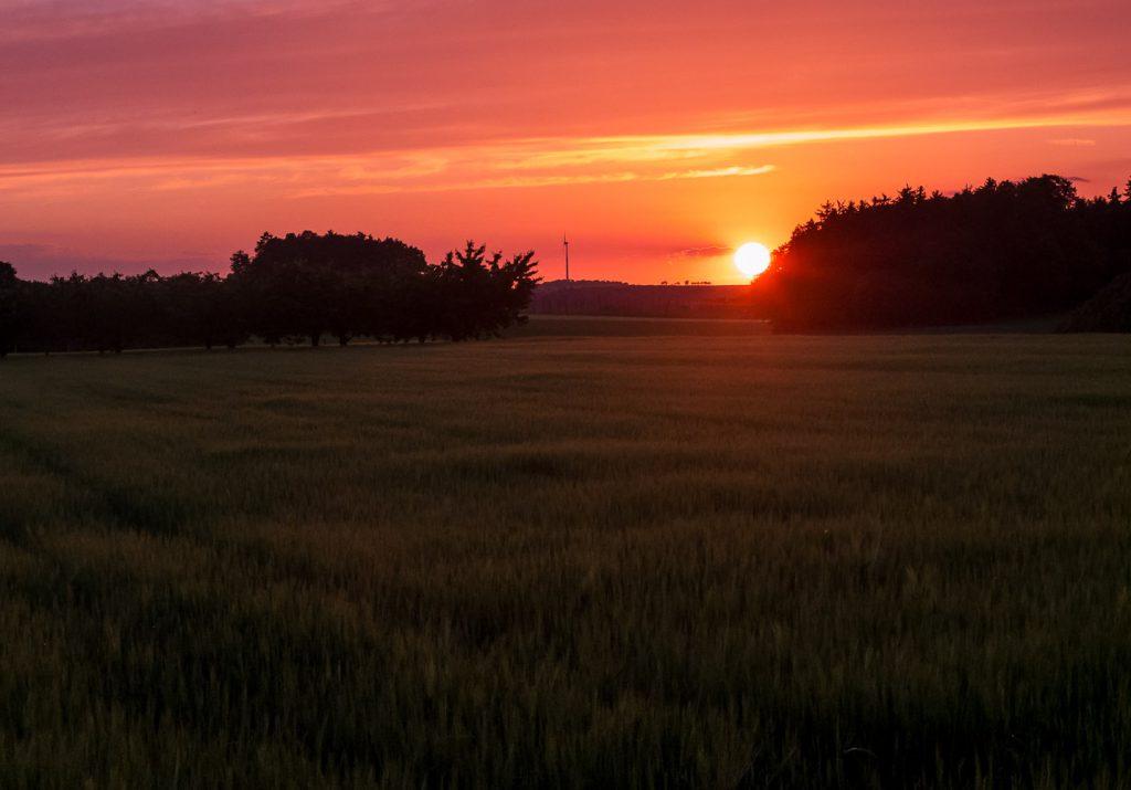 Sonnenuntergang auf weiter Flur – in der Nähe von Lilling
