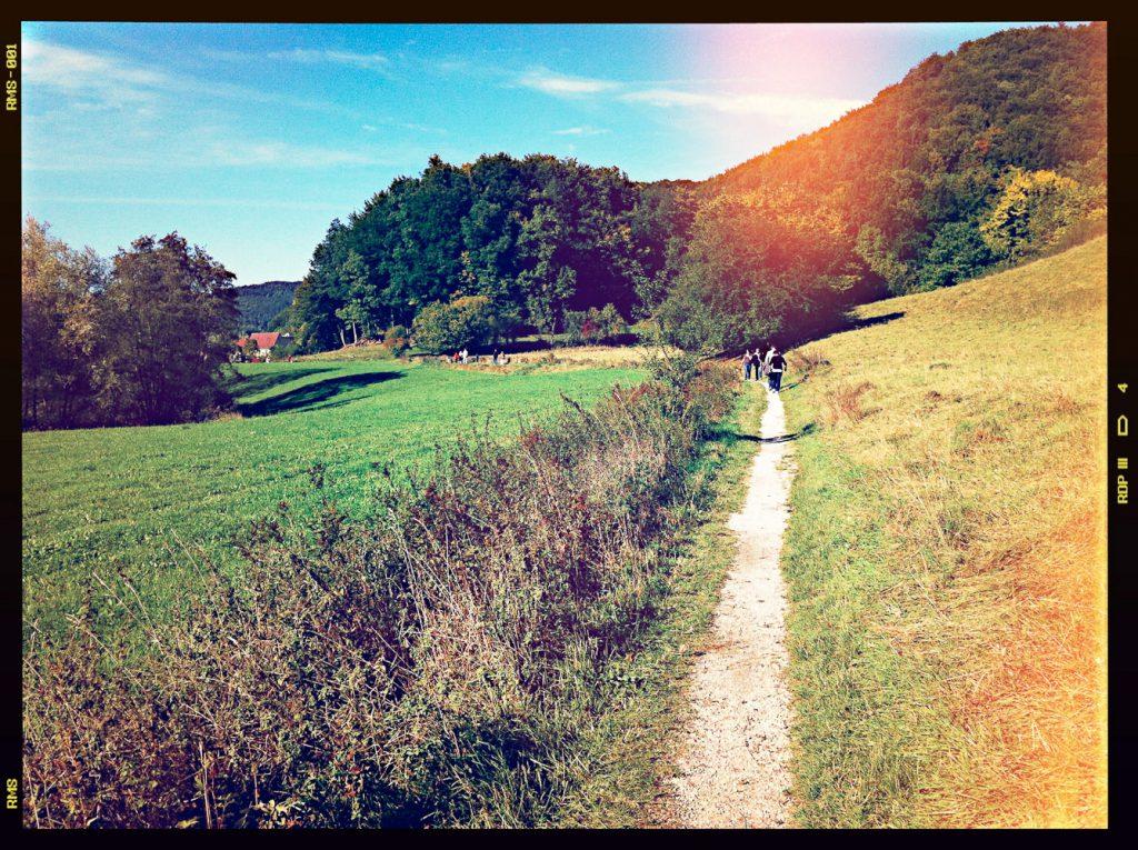 Single-Trail zwischen Egloffstein und Mostviel – an sonnigen Wochenenden stark von Fußgängern frequentiert