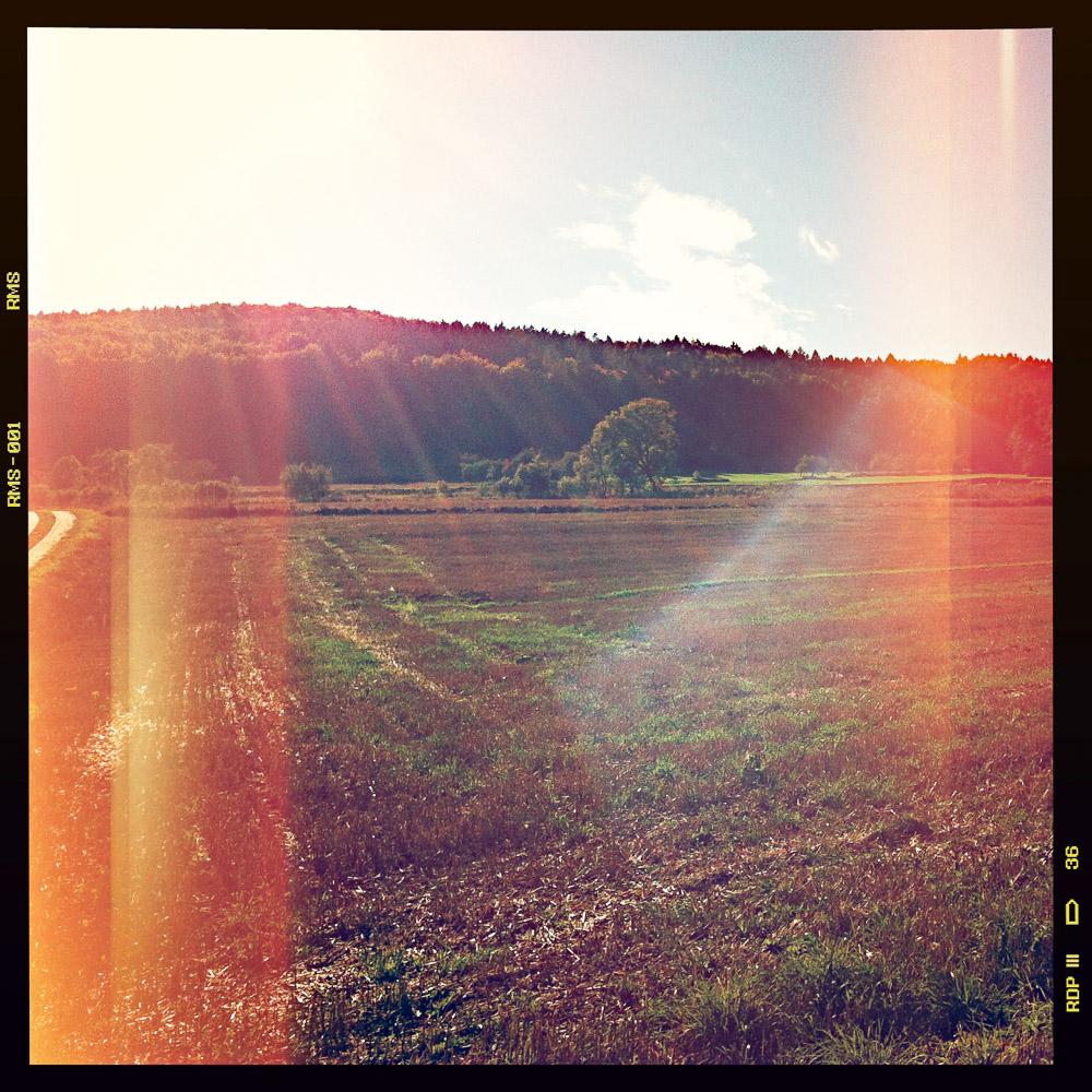 Abgeerntete Felder im unteren Trubachtal am Nachmittag