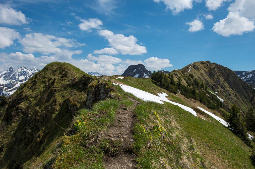 Bergpfad zur Kanzelwand