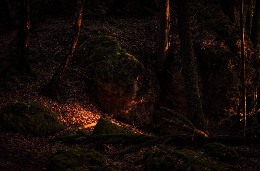 Auf dem Weg zum Quackenschloss im Wald