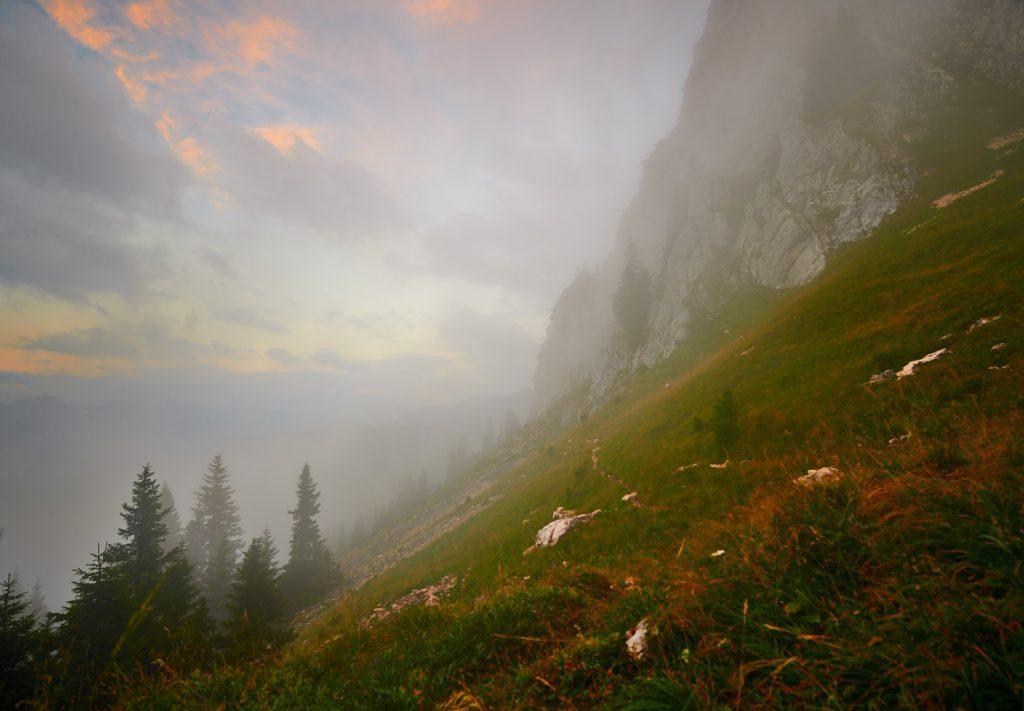 Nebelige Morgenstimmung am Fuß des Hochwiesler