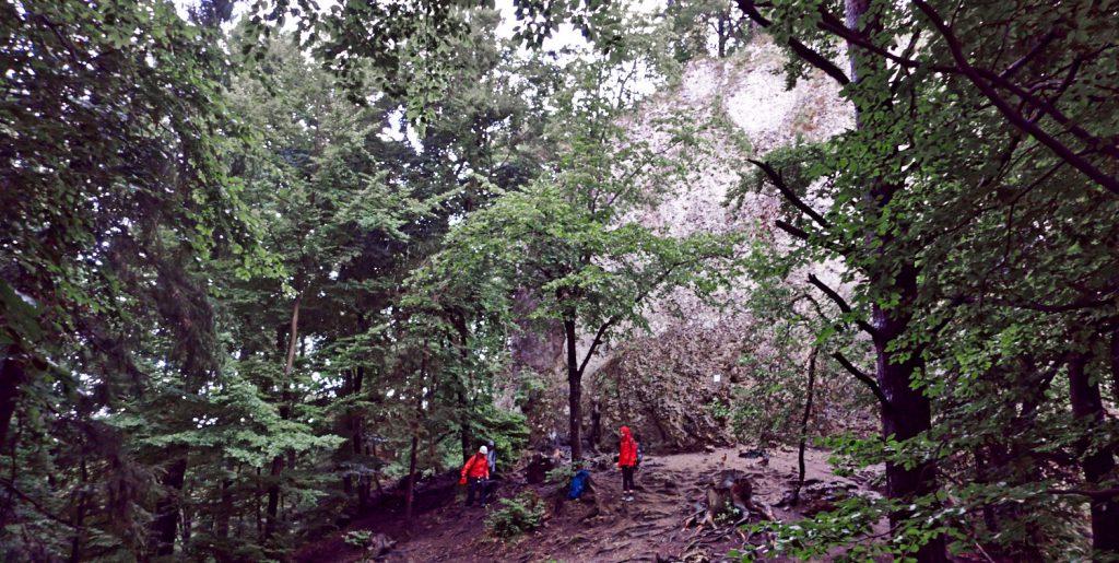 Knotenkunde und erstes Klettern an der Breitenberg Südwand in der Nähe von Gößweinstein bei leicht regnerischem Wetter