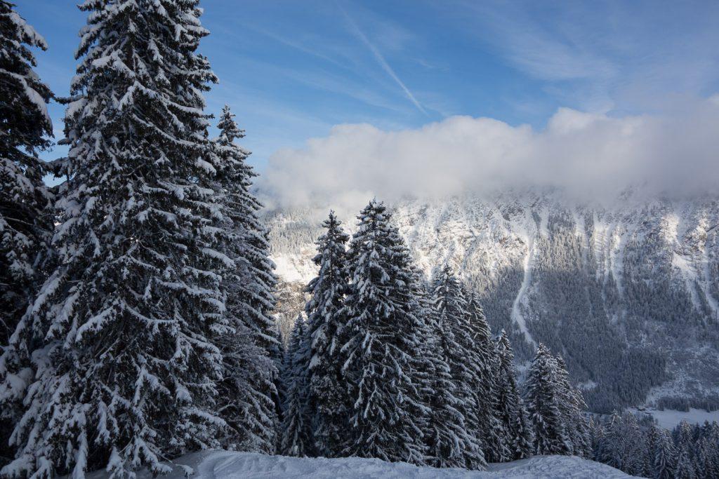 Bilderbuch-Wetter am Fellhorn