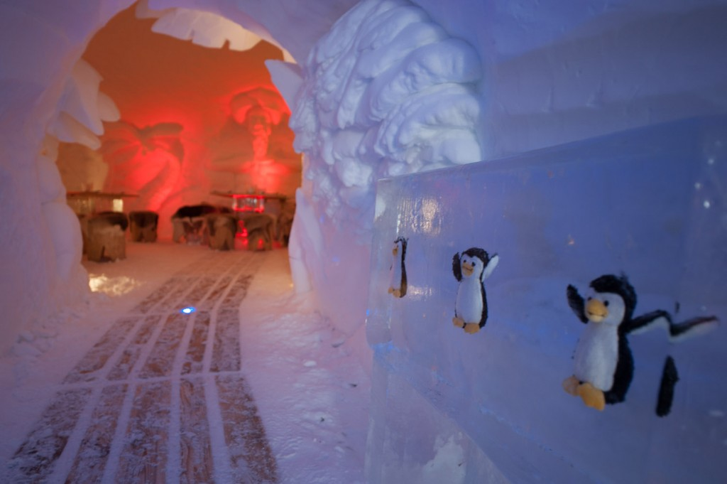 In der Iglu-Lodge