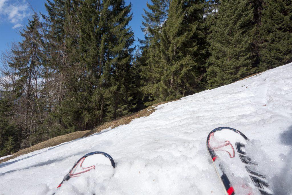 Pistenrand im Frühling am Nebelhorn