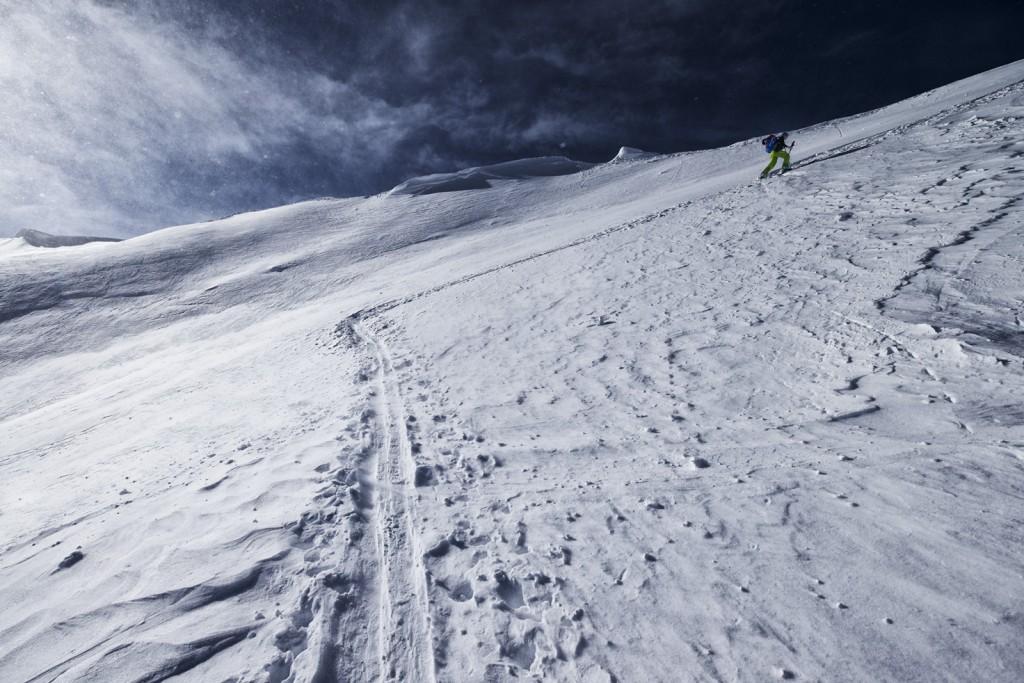 Erika kurz vor dem Gipfelgrat zur Höferspitze