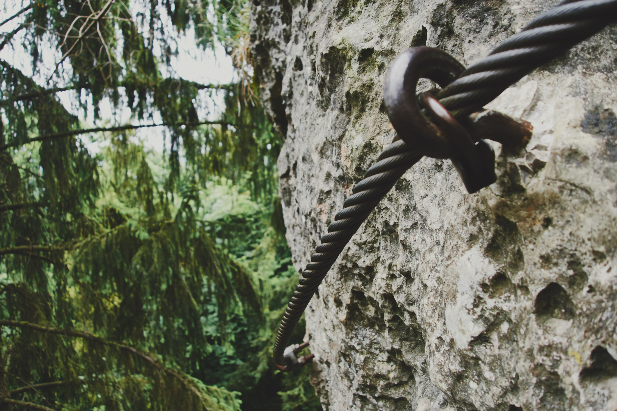 Der Höhenglücksteig im Hirschbachtal